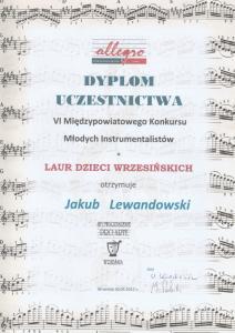 Uczestnictwo Jakub LAUR 2017